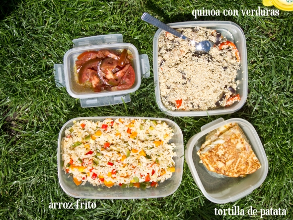 Picnic de arroz frito
