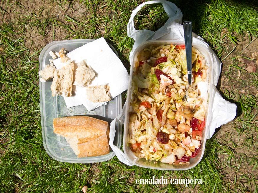 Ensalada campera vegetariana
